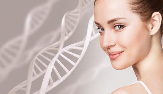 肌力底上げ!幹細胞コスメの効果とおすすめ8選【30代・40代・50代】