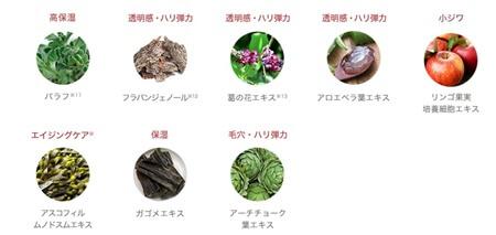 酒粕ホットスクラブクレンジング「yuiki」植物エキス