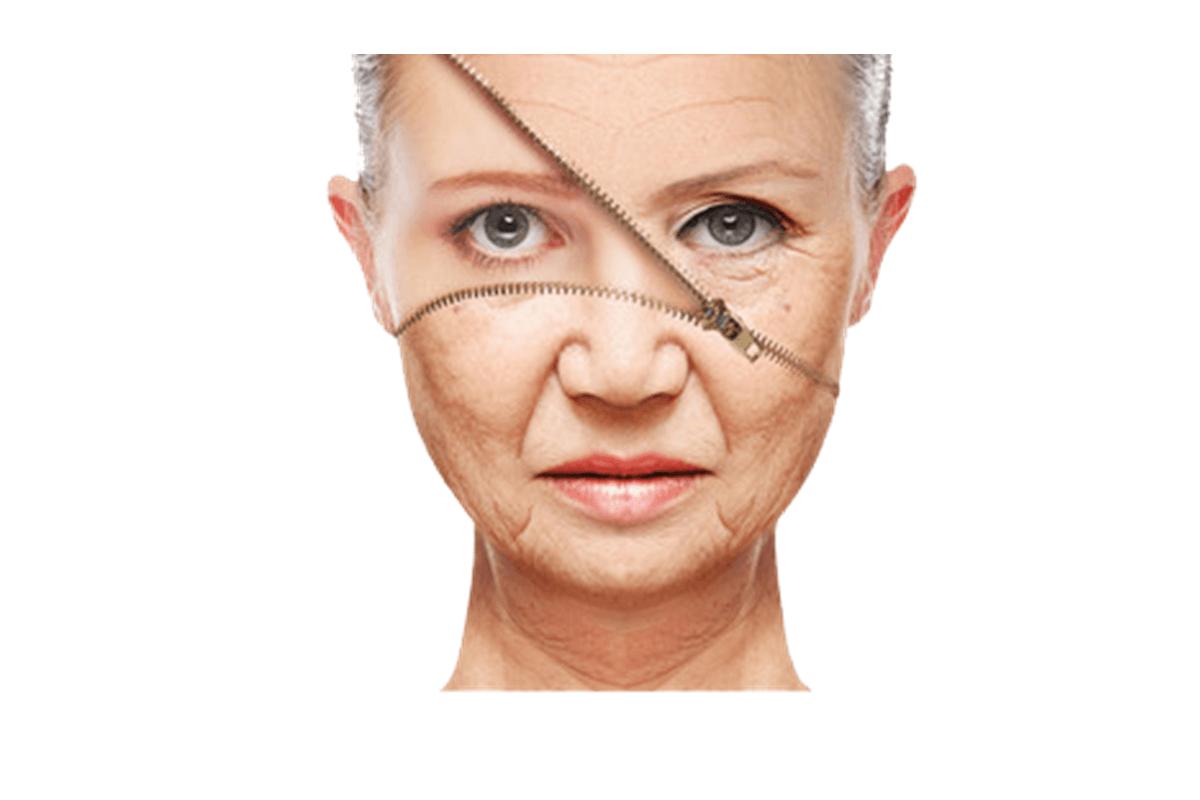 肌老化 原因 予防