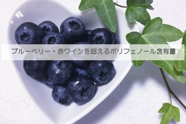 エコサート認証取得のオーガニックコスメ琉白 月桃のポリフェノール