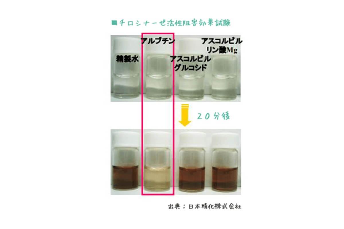 美白成分 アルブチン