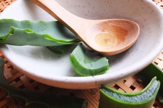 乾燥肌 敏感肌 保湿成分 アロエエキス