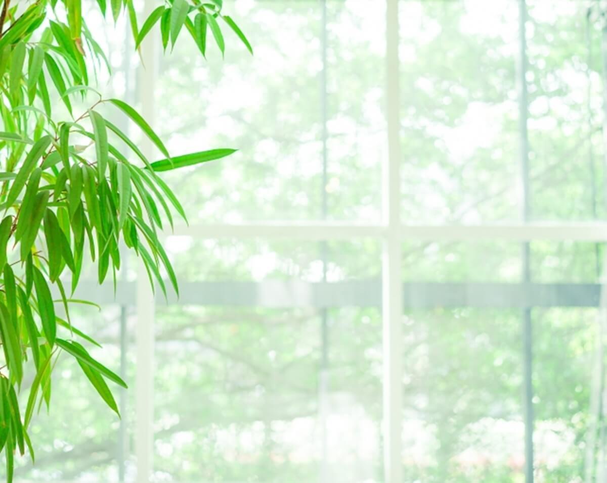 資生堂 美白化粧品 エリクシールホワイト トライアルセット