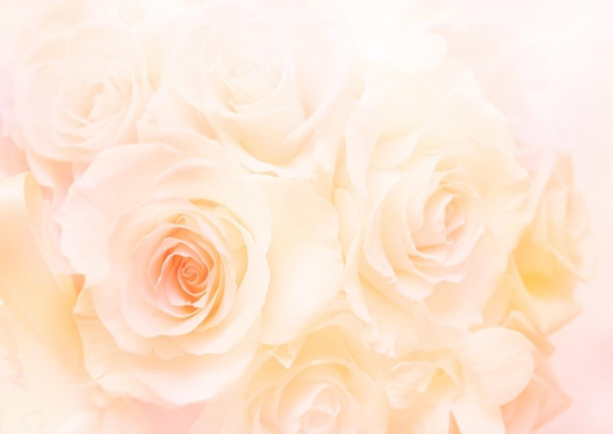 肌ラボ「白潤プレミアム 薬用浸透美白化粧水」